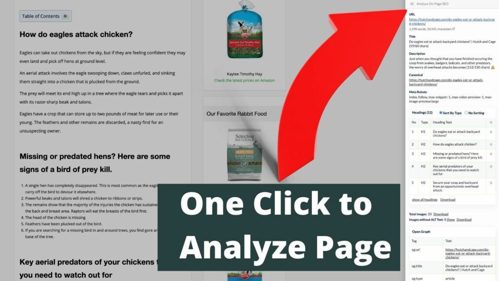 seominion analyze page